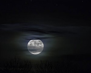 How-to-get-out-of-bed-in-the-morning-moon