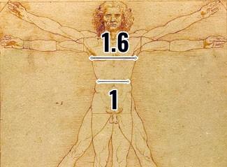 Vitruvian Man Golden Ratio