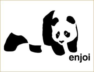 enjoi skateboards logo